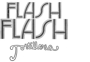 7. Logo Flash_2